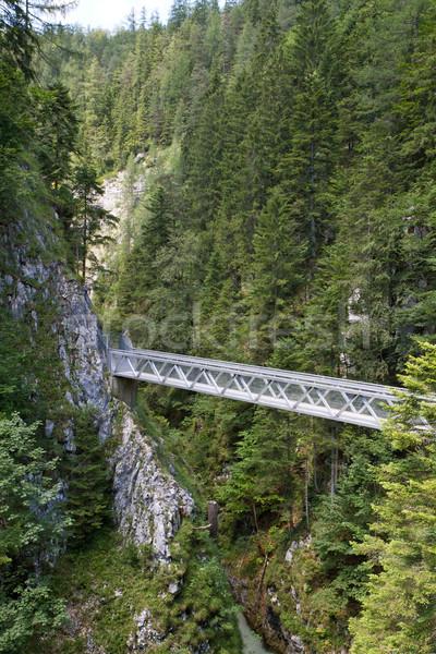 Bridge inside the Leutasch Gorge in the German alps, Bavaria Stock photo © haraldmuc