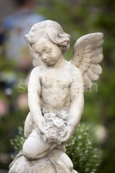 Сток-фото: ангела · статуя · выстрел · мелкий · лице
