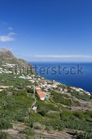 Portekiz güney sahil yeşil doğa deniz Stok fotoğraf © haraldmuc