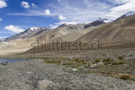 Ladakh landscape on lake pangong, India Stock photo © haraldmuc