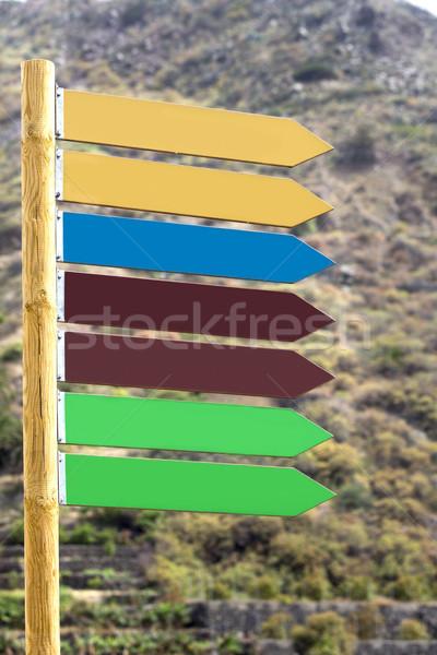 Işaret bir yön arka plan imzalamak mavi Stok fotoğraf © haraldmuc