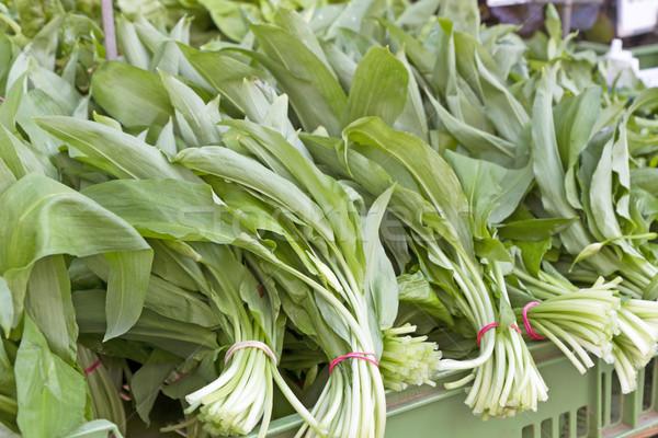 Fresh wild garlic on a market Stock photo © haraldmuc