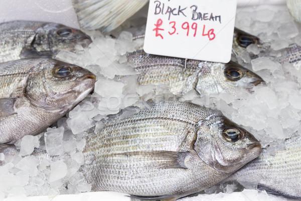 Whole black bream fish on ice Stock photo © haraldmuc