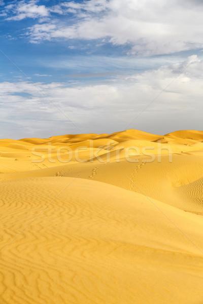Erg Chebbi desert, Morocco, North Africa Stock photo © haraldmuc