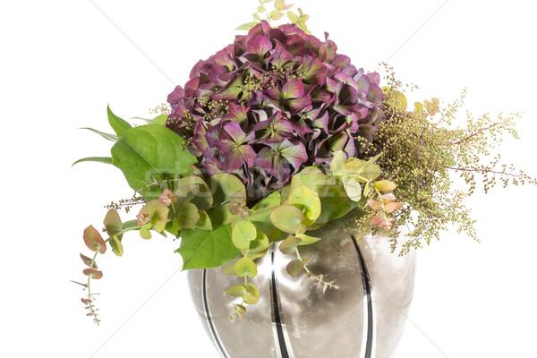 Virágváza fehér virág természet levél háttér Stock fotó © haraldmuc