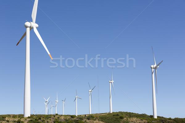 Rüzgâr park ada madeira Portekiz gökyüzü Stok fotoğraf © haraldmuc
