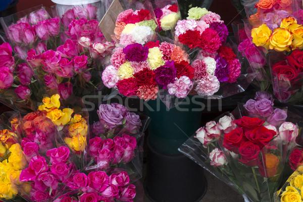 Friss rózsák virágüzlet rózsa nyár piros Stock fotó © haraldmuc
