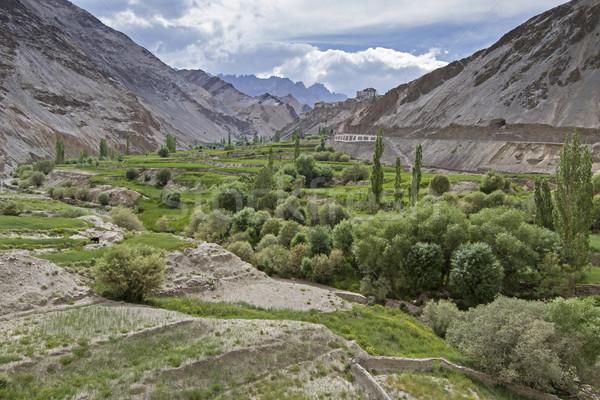 Stok fotoğraf: Dağ · manzara · Hindistan · görmek · manastır · doğa