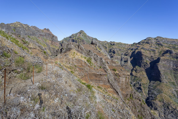 Yürüyüş madeira ada Portekiz manzara dağ Stok fotoğraf © haraldmuc