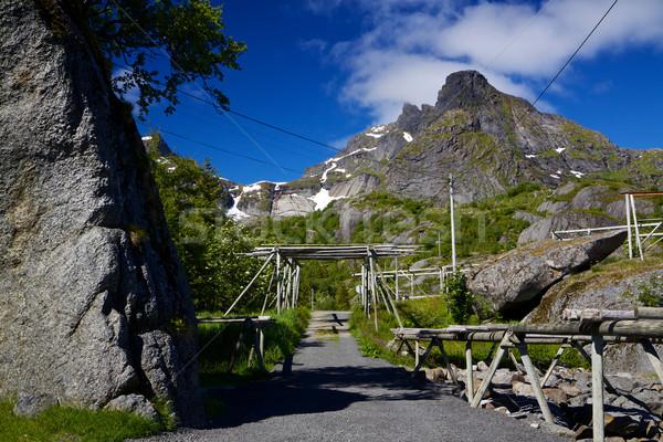 Road in Norway Stock photo © Harlekino