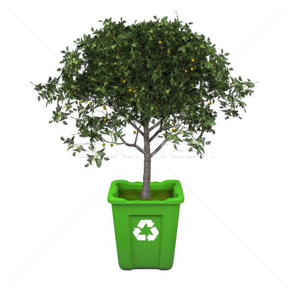 árvore frutífera reciclar reciclagem crescente verde Foto stock © Harlekino