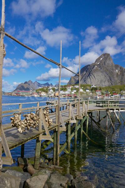 Wooden pier in fjord Stock photo © Harlekino