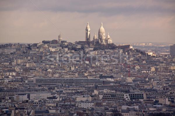 птица мнение Париж Панорама Сток-фото © Harlekino