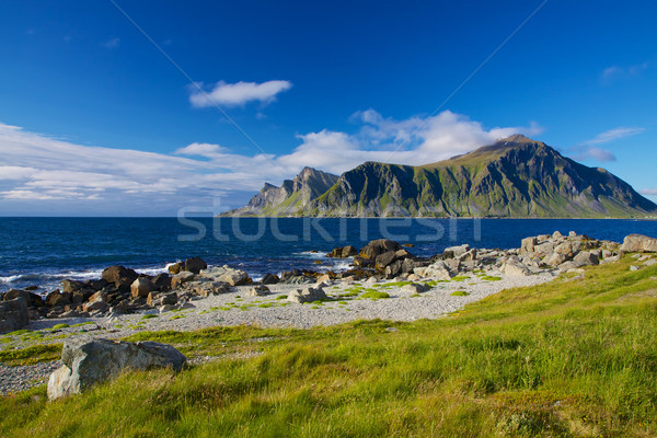 Norwegia lata sceniczny panorama norweski Zdjęcia stock © Harlekino