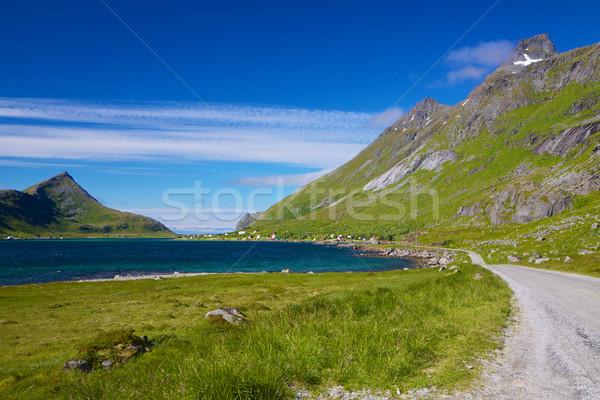 Scenic road on Lofoten Stock photo © Harlekino