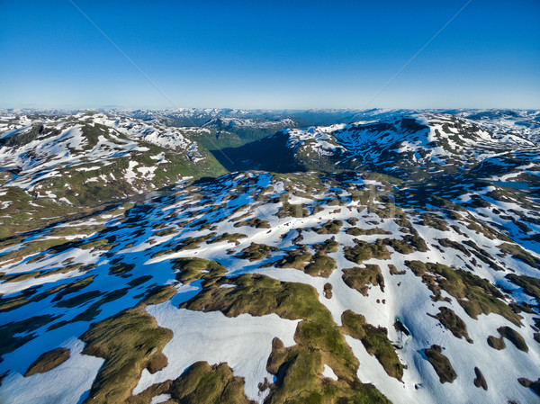 норвежский гор живописный Солнечный лет Сток-фото © Harlekino