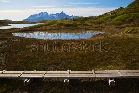 норвежский гор туристических пути Норвегия живописный Сток-фото © Harlekino