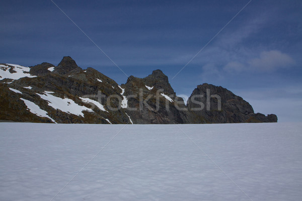 Arctic summer Stock photo © Harlekino
