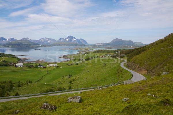 Nyár zöld mezők szigetek Norvégia rövid Stock fotó © Harlekino