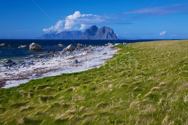 Сток-фото: живописный · пляж · Арктика · Норвегия · Солнечный
