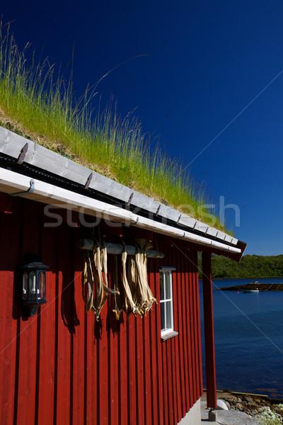 рыбалки хижина подробность традиционный норвежский сушат Сток-фото © Harlekino