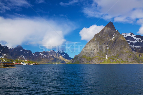 Scenic norwegian fjord Stock photo © Harlekino