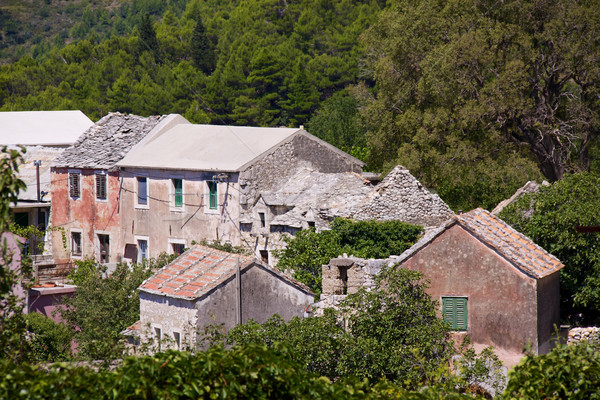 Village in Balkans Stock photo © Harlekino