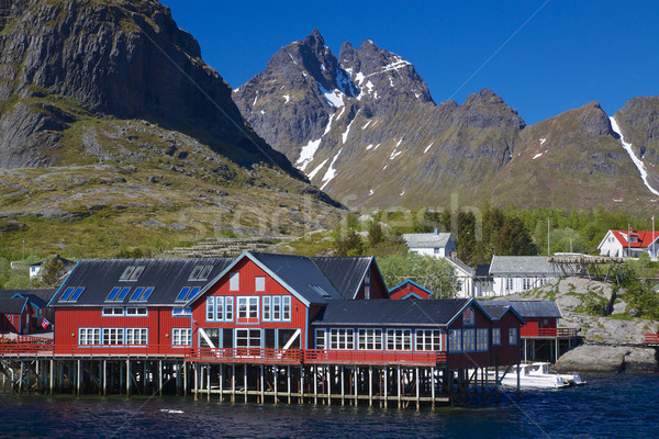 Village on Lofoten Stock photo © Harlekino