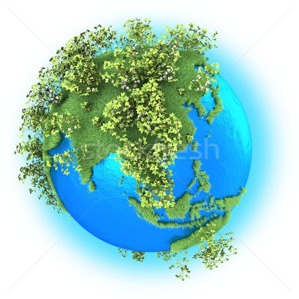Güneydoğu asya dünya gezegeni çimenli pamuk yalıtılmış beyaz Stok fotoğraf © Harlekino