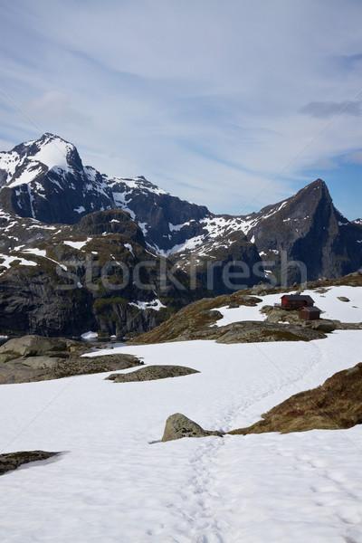 Peaks on Lofoten islands Stock photo © Harlekino