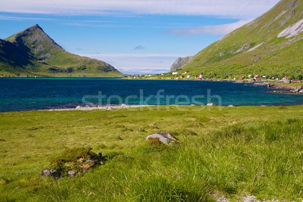 Norwegian fjord Stock photo © Harlekino