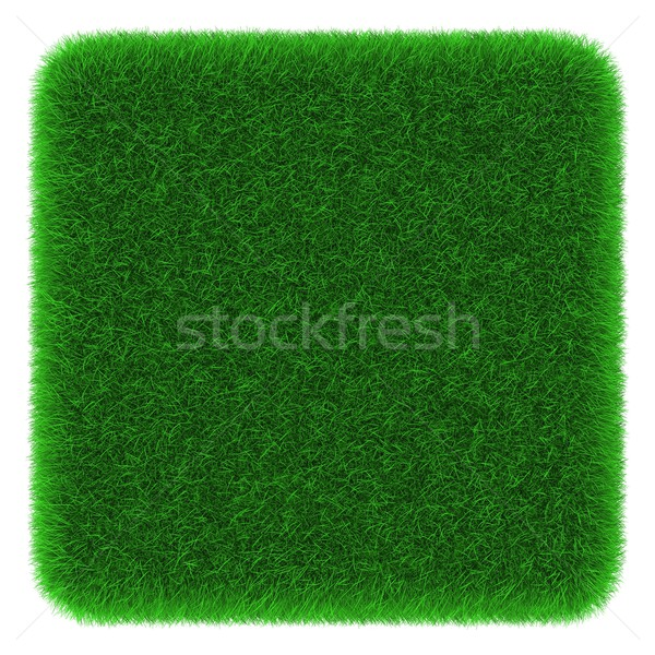 Grasachtig kubus object gedekt gras geïsoleerd Stockfoto © Harlekino