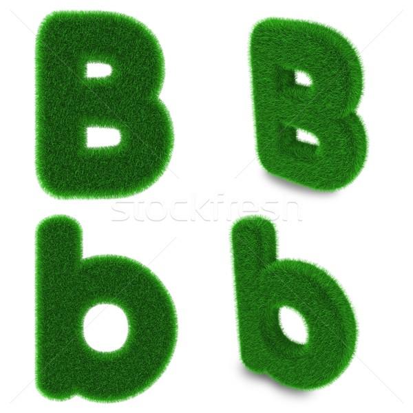 Letter B made of grass Stock photo © Harlekino