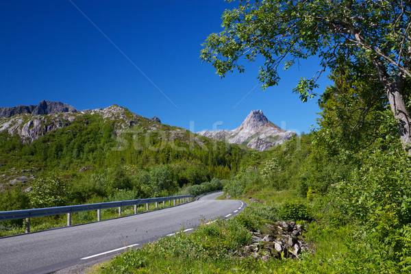 Roadtrip in Norway Stock photo © Harlekino