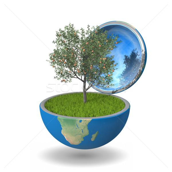árvore frutífera dentro planeta crescente planeta terra Foto stock © Harlekino