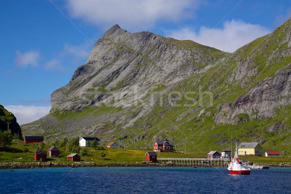 Norwegian village Stock photo © Harlekino