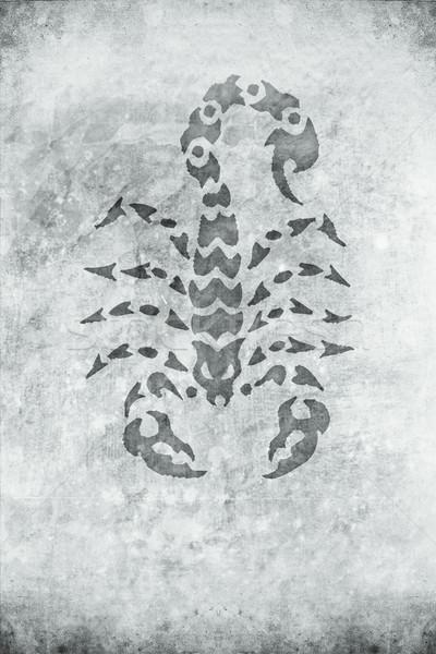 Scorpione vecchio retro design guardare texture Foto d'archivio © Hasenonkel