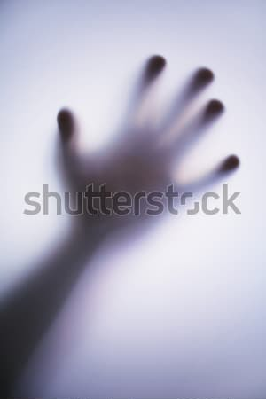 hand Stock photo © Hasenonkel