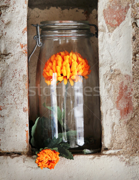 Szép üveg virág narancs virág áll Stock fotó © Hasenonkel