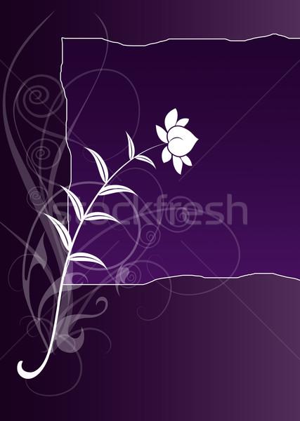 flower Stock photo © Hasenonkel