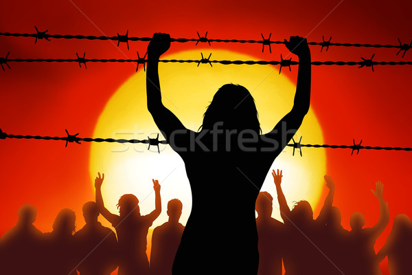 Barbed wire Stock photo © Hasenonkel