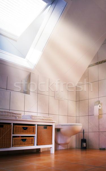 roof window Stock photo © Hasenonkel