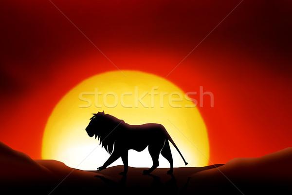 Sáhara desierto león puesta de sol paisaje verano Foto stock © Hasenonkel
