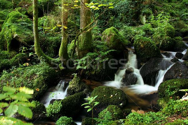 flowing water Stock photo © Hasenonkel