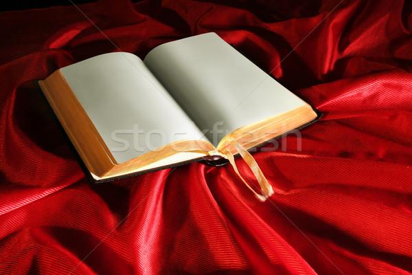 Książki czerwone światło książek Jezusa edukacji piśmie Zdjęcia stock © Hasenonkel