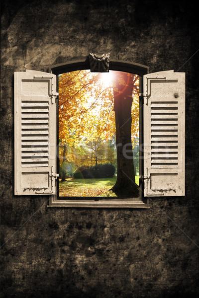 Window Stock photo © Hasenonkel