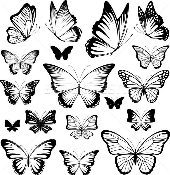 Papillon vecteur silhouettes papillons isolé Photo stock © hayaship