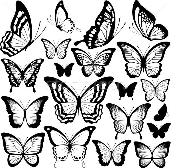Stock fotó: Pillangó · sziluettek · vektor · pillangók · fekete · izolált