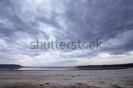 Landscape in the nature reserve Stock photo © hedrus