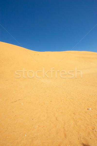 Sivatag tájkép gyönyörű nyár nap Namíbia Stock fotó © hedrus